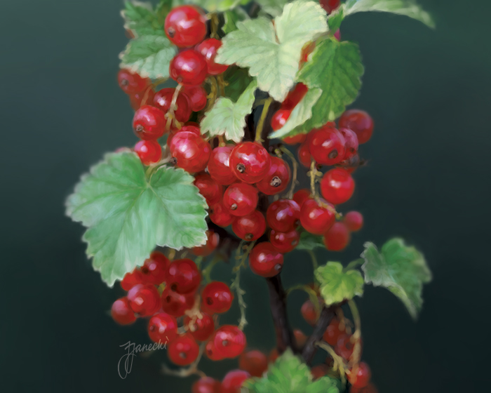 01-Currants-Garden-digital-painting-series-by-Janos-Janecki